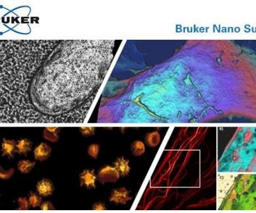 Webinar : Bio-AFM Applications in Cell Study