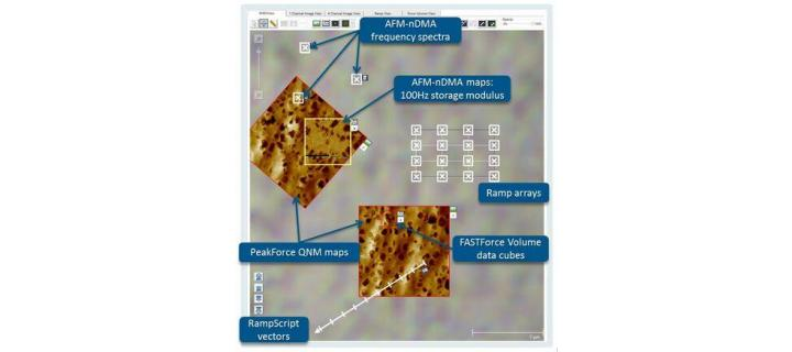 AFM-based Nanoscale DMA